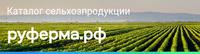 АО «Корпорация «МСП»
